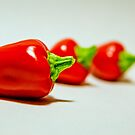 chilli by Hege Nolan