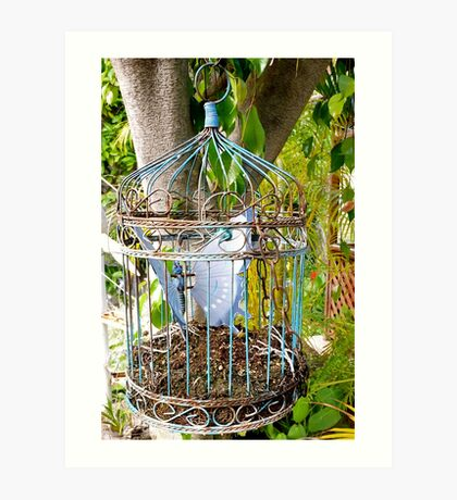 Antique Birdcage Art Print