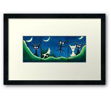 Black Cat, White Cat Framed Print