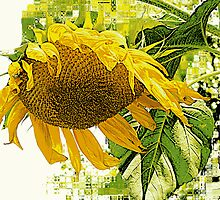 Mosaic Sunflower by sillyfrog