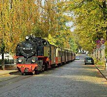 "MVP54 ""Molli"" in Bad Doberan, Germany. by David A. L. Davies"