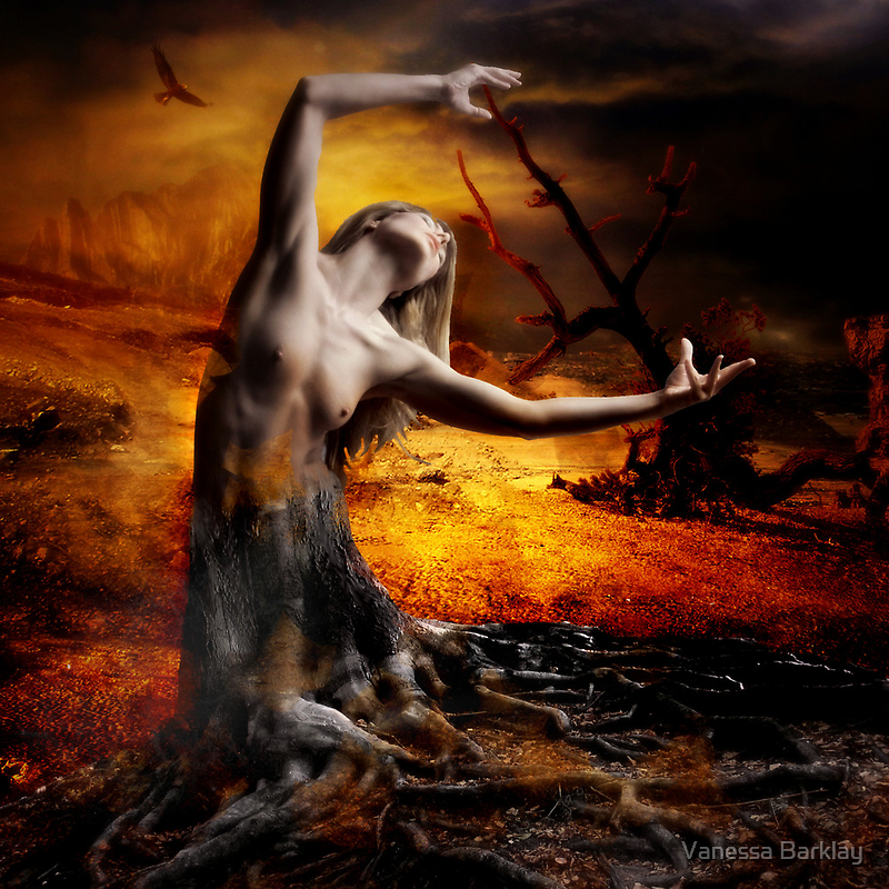 The Dying Dryad by Vanessa Barklay