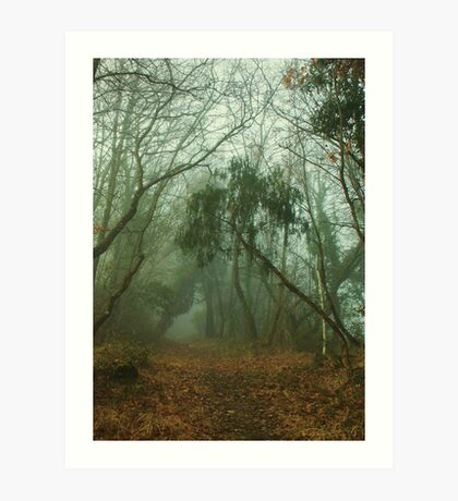 Faerie Wood Art Print