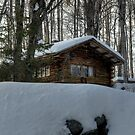 Cabin Nestled in the Snow by Monica M. Scanlan