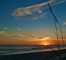 gulf sunset by Mark de Jong
