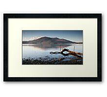 Lone Branch, Lough Leane Framed Print