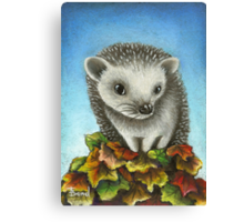 Little hedgehog on a big pile of leaves Canvas Print