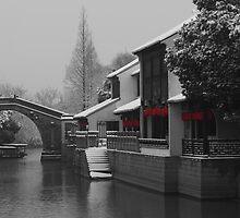 Suzhou Winter by Mark Bolton