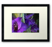 We Be Glad We Be Purple Framed Print