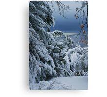 Late Snow Canvas Print