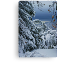 Late Snow Canvas Print