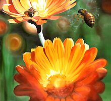 """Calendula"" - oil painting of Marigold flowers with visiting bee's by James  Knowles"