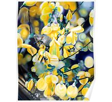 """""""The Lightness of Bee-ing"""" - oil painting of bee's in the gorse bushes Poster"""