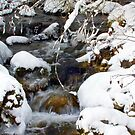 Gash Creek with snow and ice in February by amontanaview