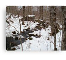 Cold Spring Brook Canvas Print