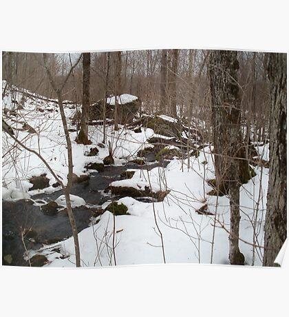 Cold Spring Brook Poster