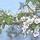 Stone Pear in Bloom by T. Victor