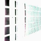 White Light, White Heat by Paul  Green