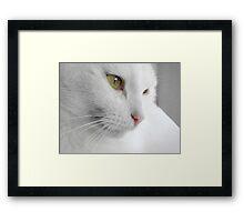 """""""Oh, My Beautiful Boy.... Framed Print"""