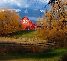 Red Barn and the Willows by Breanna Stewart