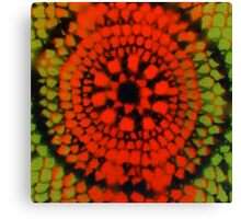 Scale Mandala 2 Canvas Print