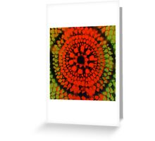 Scale Mandala 2 Greeting Card