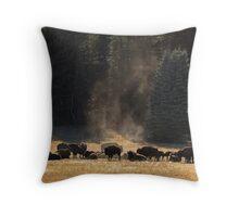 North Rim Bison, Arizona Throw Pillow