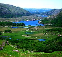 Ladies View - Ring of Kerry by Coexistism