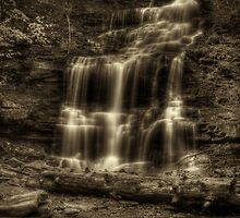 Ganoga Falls (faux vintage) by Aaron Campbell