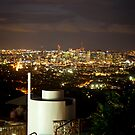 Mt Cootha Lookout - Brisbane Qld by Giovanna Devlin