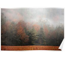 Misty Fall Morn Poster