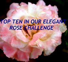 Top ten challenge banner by ♥⊱ B. Randi Bailey