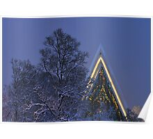 Arctic Cathedral Poster