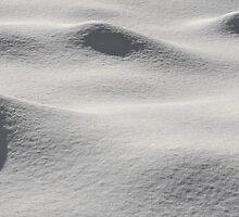 Snow dunes by Sandra Guzman