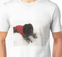 Izzy Bear in the Snow Unisex T-Shirt