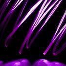 Purple Scribble by Reza G Hassani