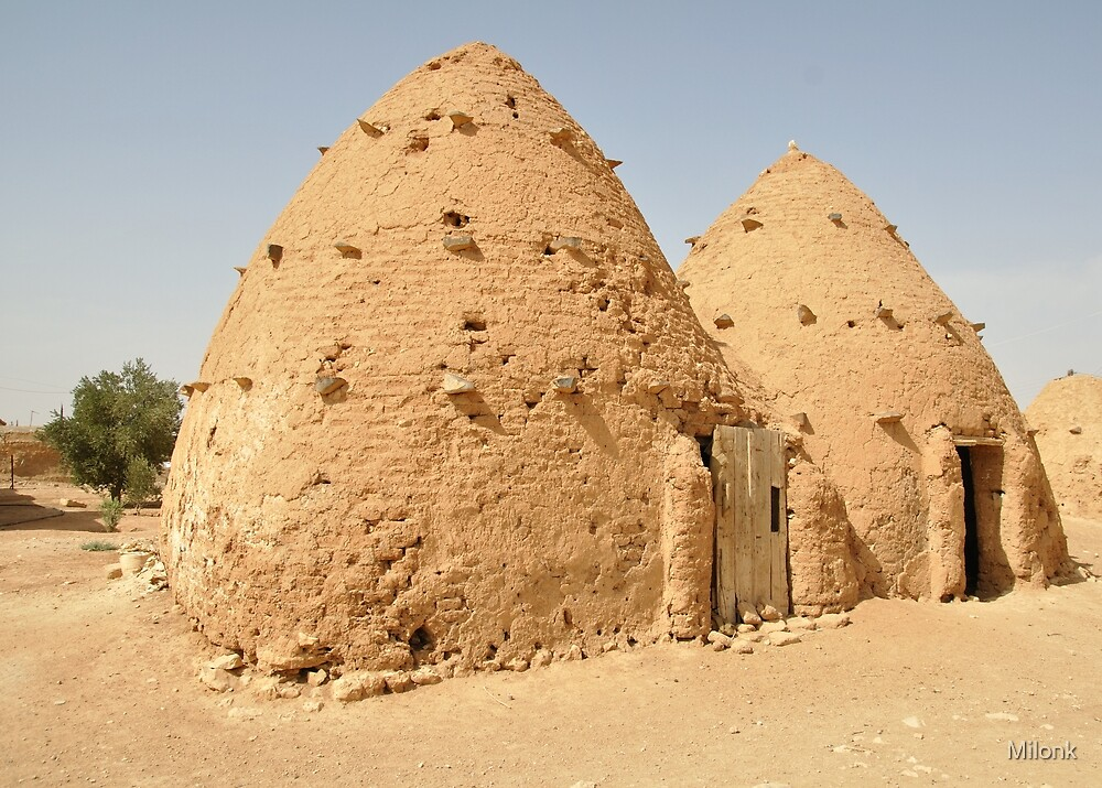 Beehive houses in Syria by Milonk