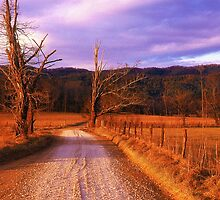 Lonely Road by Rodney Williams
