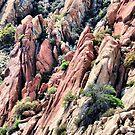 Rocks of Arizona by Pat Moore