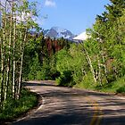 Taking In The SSS Views RMNP by NatureGreeting Cards ©ccwri