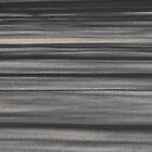 Stripes by Sandra Guzman