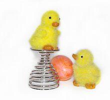 oster kücken - Easter chicks by paulinchen