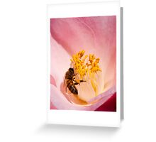 Bee on a Camellia Greeting Card