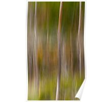 Upcountry Forest 1 Poster