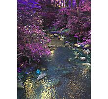 Different Aspect Brook Photographic Print