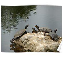 Teenage Mutant Ninja turtles,attack!!! Poster