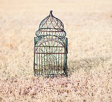 caged by Heather Chipps