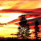 Mukilteo Sunset by Emilie Trammell