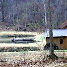 Little Grist Mill in Southside, AL by Charldia