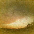 November Sky by Danielle Cardenas